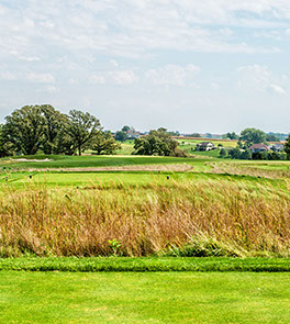 Hole 13 feature shows beautiful tall grasses separating the tee from the green.